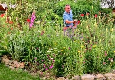 Naturgarten-Talk mit Mini Tipps-Erfinder und Vollbluthortusianer Daniel Jakumeit
