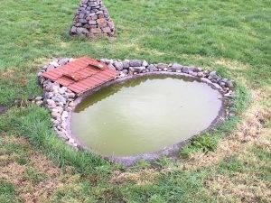 Flachwasserteich (Hortus Quercuum)