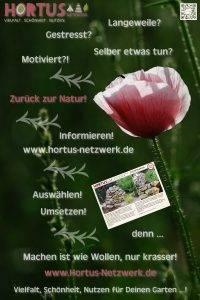 Vielfalt, Schönheit, Nutzen für Deinen Garten …!