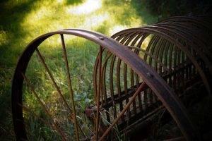 Neues beim Eintragen von Gärten und Horti im Hortus-Netzwerk