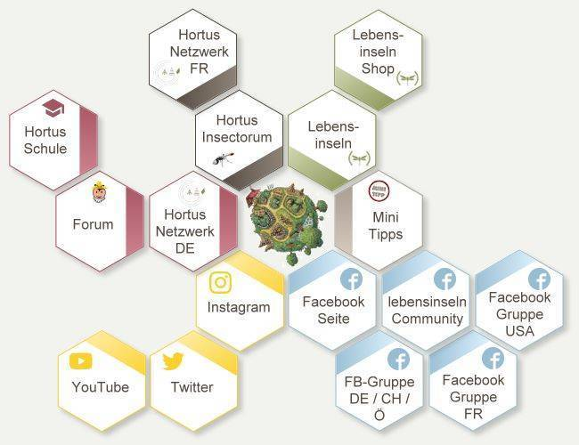 Ein Netz, ein Hortus-Netzwerk