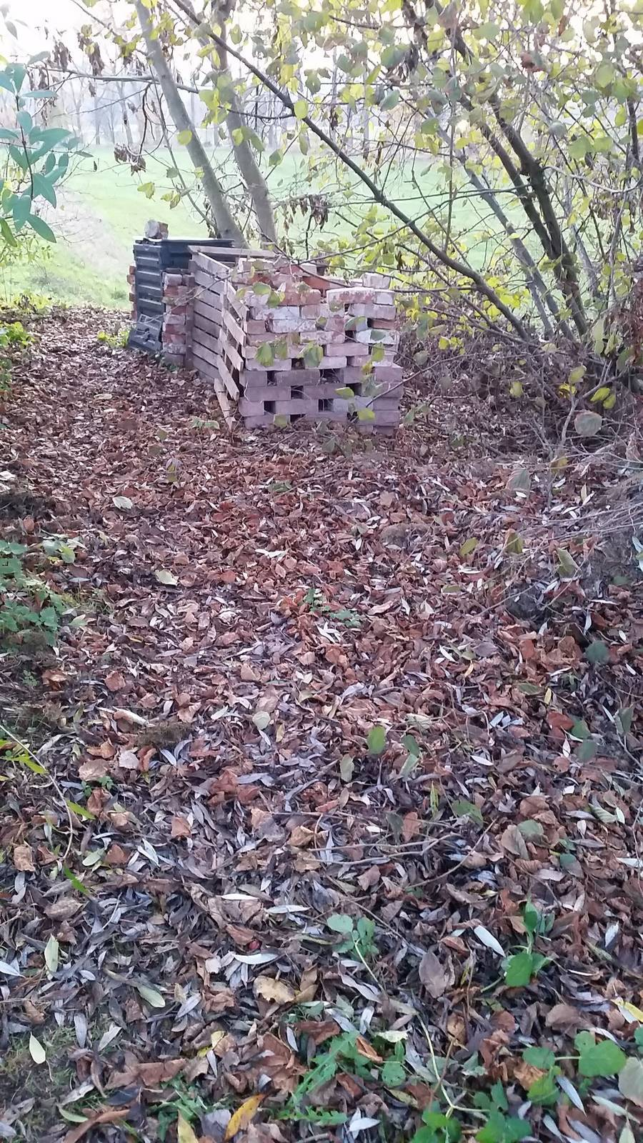 Herbst-2019-Kompostweg.jpg