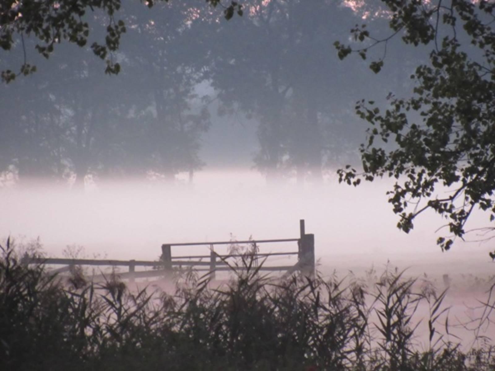 Herbstabend-IMG_8414.JPG