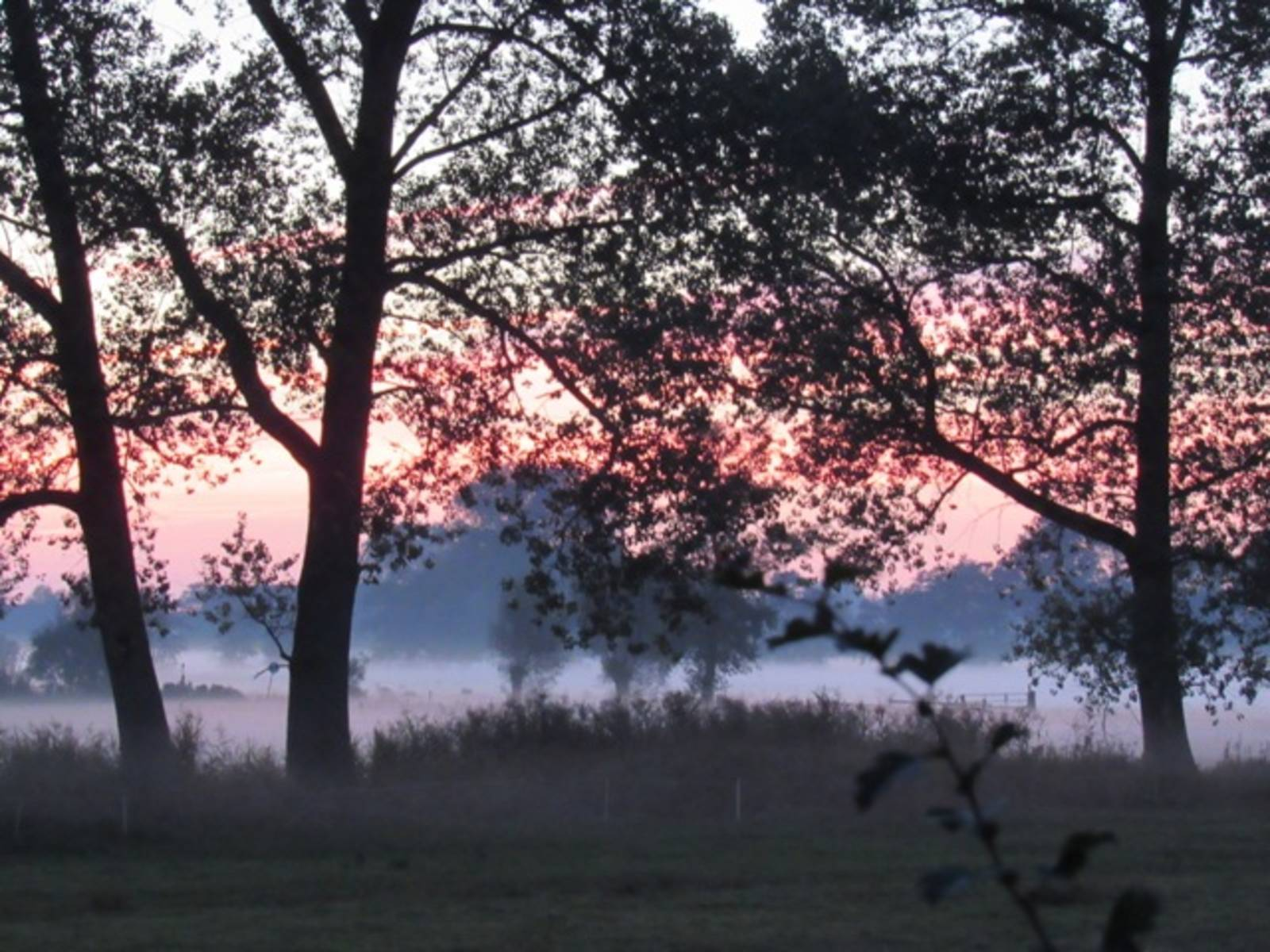 Herbstabend-IMG_8425.JPG