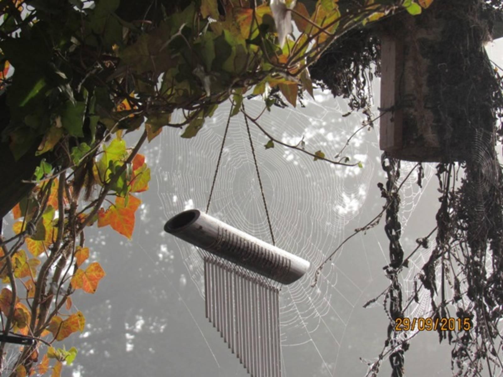 Herbstmorgen-IMG_8204.JPG
